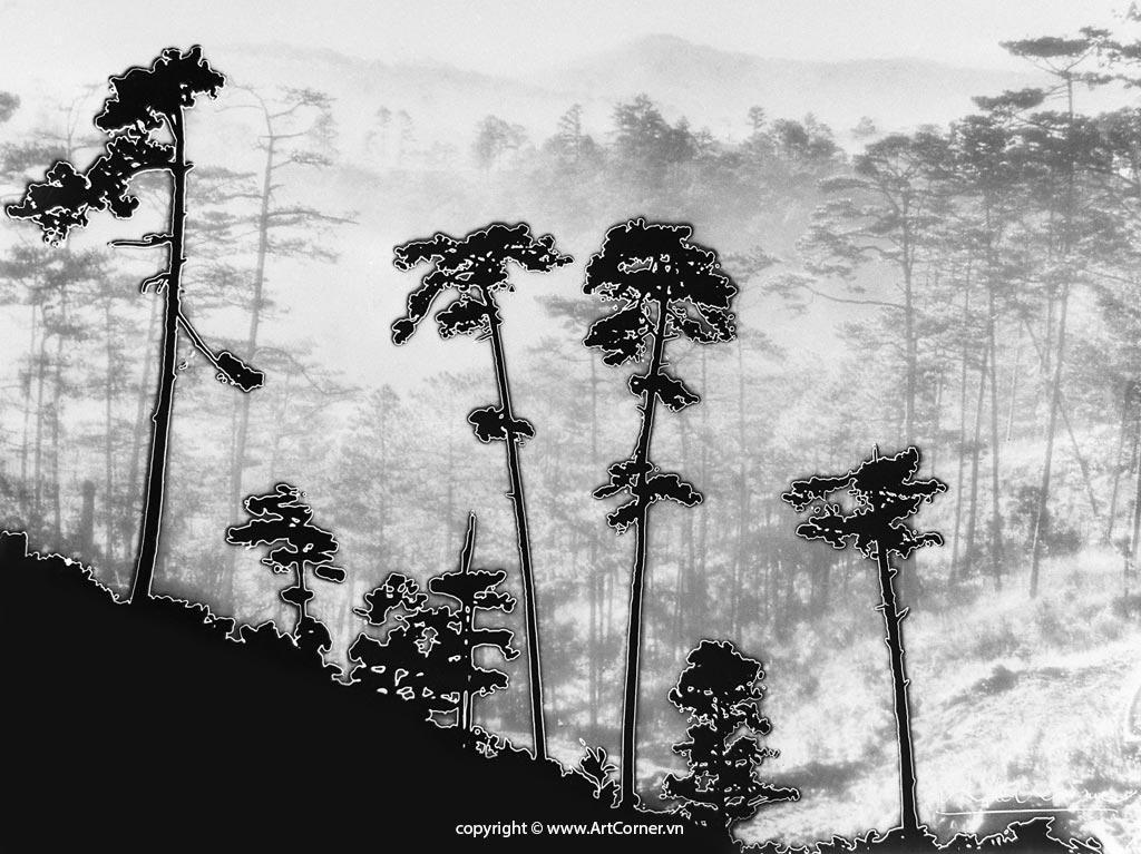 Núi Đồi Mờ Sương - Nguyễn Bá Mậu