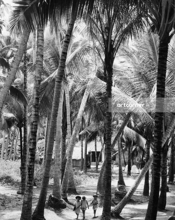 Nha Trang xưa - Đi học - Way to school - Nha Trang - 1962