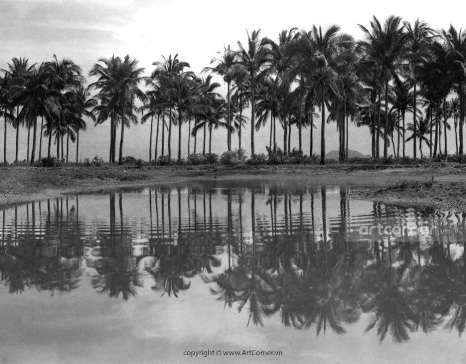 Nha Trang xưa - Miền quê - Countryside sight - Nha Trang - 1969