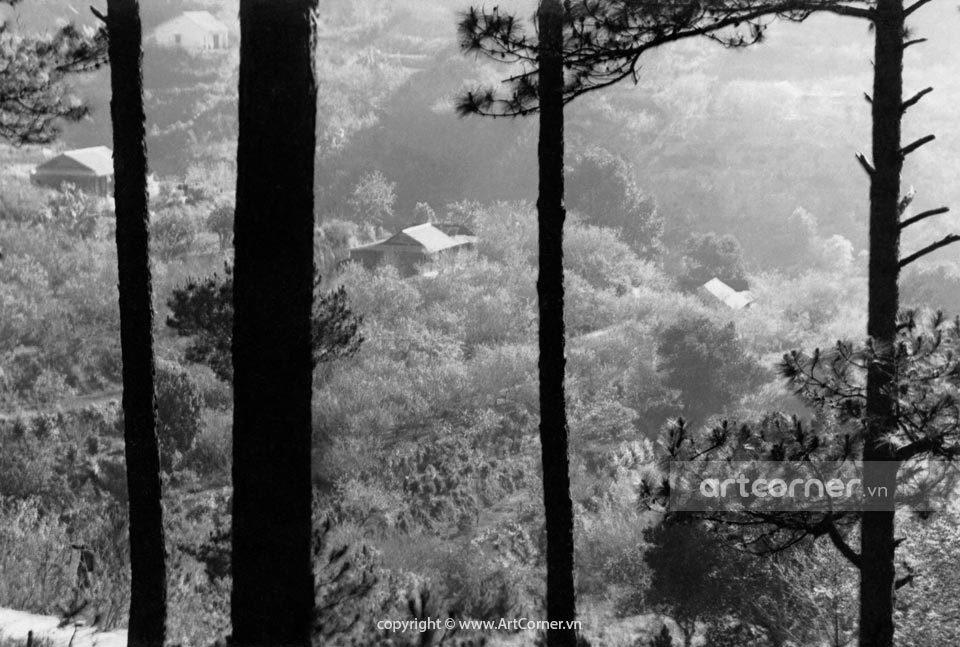 Đà Lạt xưa - A Picturesque City - Bức Tranh Thơ Mộng - Đà Lạt - 1955