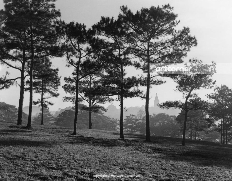 Đà Lạt xưa - Cù Hill (Golf Hill) - Đồi Cù - Đà Lạt - 1955