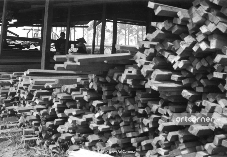Đà Lạt xưa - Exploitation of Forestry - Khai Thác Lâm Sản - Đà Lạt - 1974