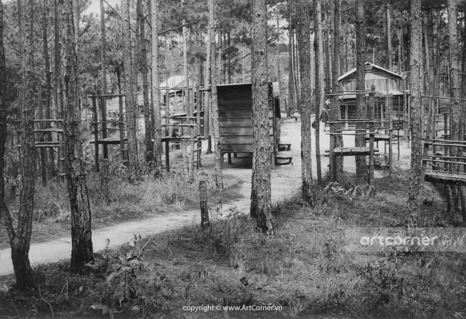 Đà Lạt xưa - Wooden Huts in Pine Woods - Nhà Gỗ Trong Rừng Thông - Đà Lạt - 1968
