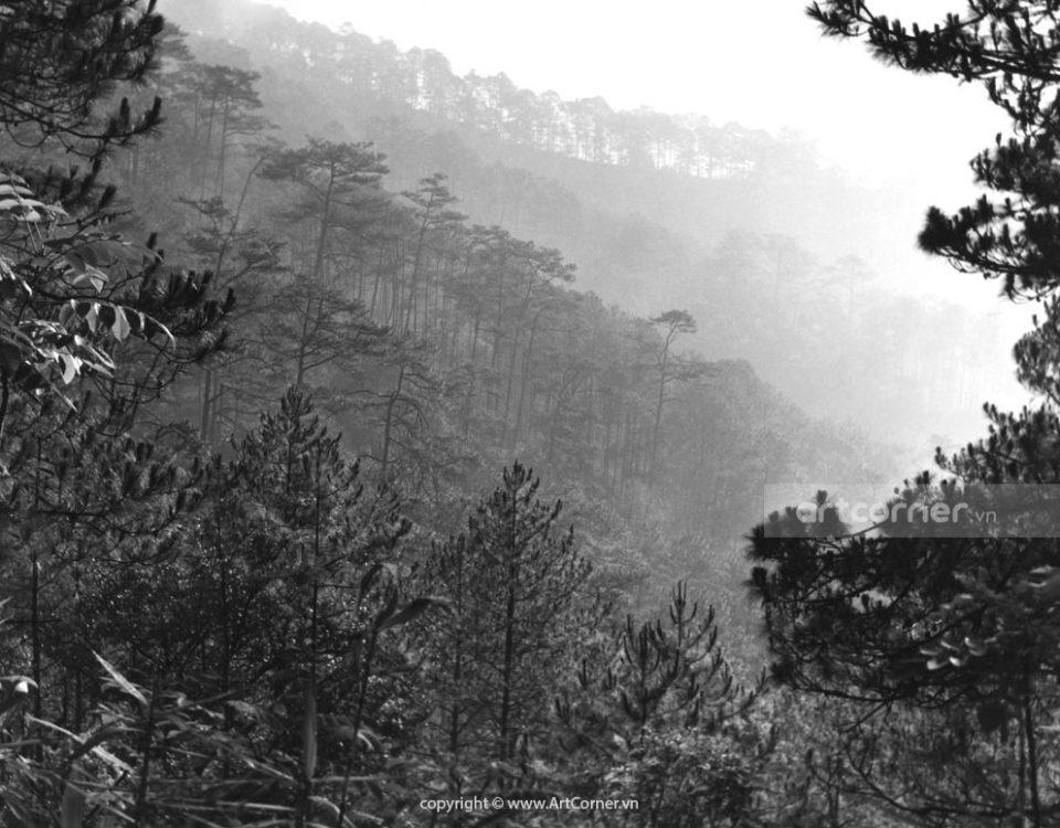 Đà Lạt xưa - Endless Hills and Mountains - Núi Đồi Trùng Điệp - Đà Lạt - 1962