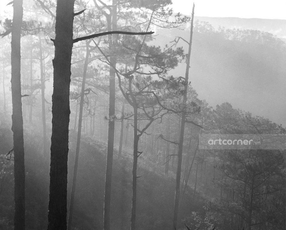 Đà Lạt xưa - Foggy Mountains - Sương Mờ Bên Núi - Đà Lạt - 1962