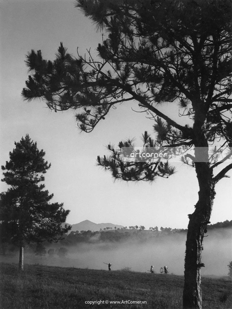 Đà Lạt xưa - Trong Màn Sương - Đà Lạt - 1959