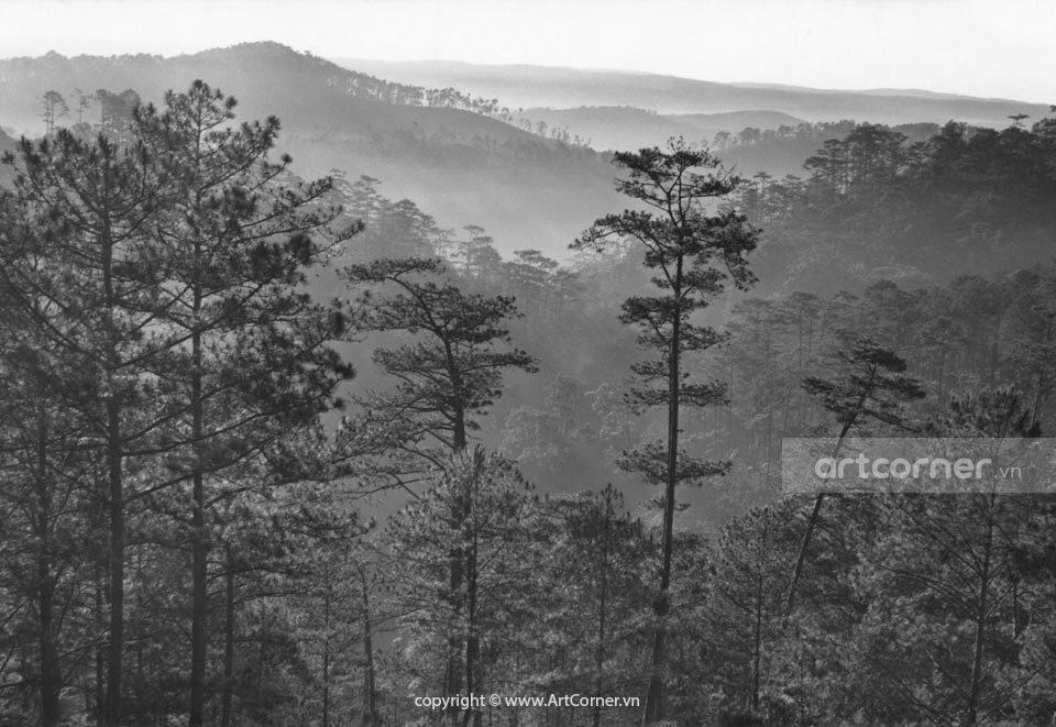 Đà Lạt xưa - Trong Màn Sương - Đà Lạt - 1962