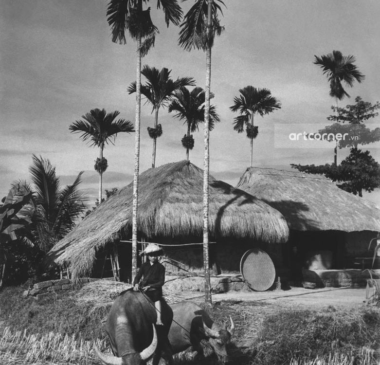 Nha Trang xưa - Quê Việt - Việt Nam countryside - Nha Trang - 1960