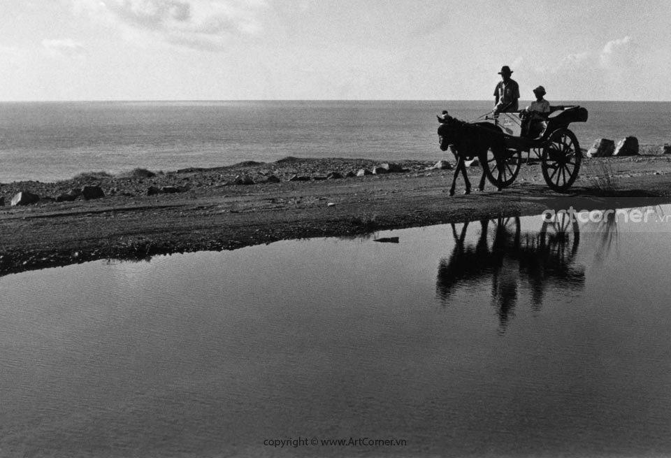 Vũng Tàu xưa - Xe ngựa xưa ở Vũng Tàu - 1965
